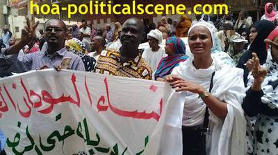 Invitation to Comment 34: Sudanese Bidding Fatima Ahmed Ibrahim Farewell 2.