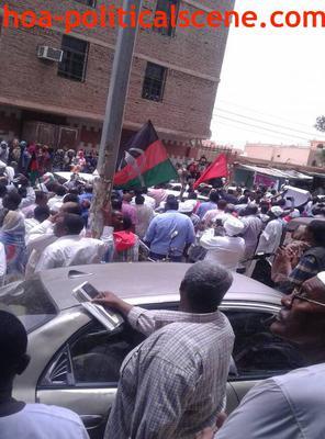 Invitation to Comment 34: Sudanese Bidding Fatima Ahmed Ibrahim Farewell 3.