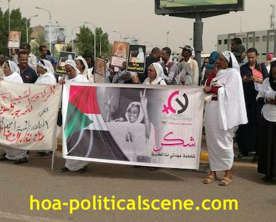 Invitation to Comment 35: Sudanese Bidding Fatima Ahmed Ibrahim Farewell 3.