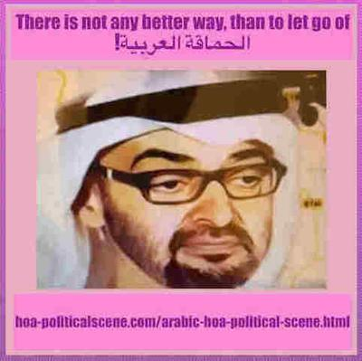 hoa-politicalscene.com: How did sheikh UAE Mohammed bin Zayed al Nahyan react to the words he heard from the Ethiopian PM Abiy Ahmed Ali. Did he learn anything new in the world modern politics?