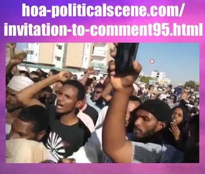 Invitation to Comment 95: Sudanese People January 2019 Protests 290.