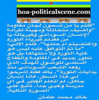 hoa-politicalscene.com/invitation-to-comment112.html: Sudanese resistance committees, what a mess?
