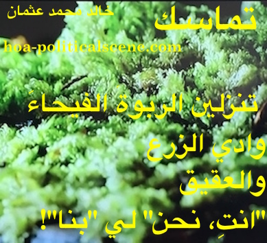 hoa-politicalscene.com/arabic-poetry-posters.html - Arabic Poetry Posters: Snippet of poetry from