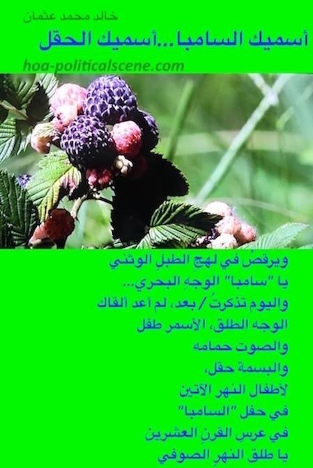 hoa-politicalscene.com/arabic-hoa.html - Bilingual HOA: Poem from