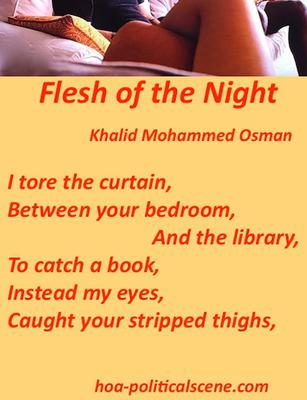 hoa-politicalscene.com: Flesh of the Night by poet and journalist Khalid Mohammed Osman designed on a picture of naked legs.