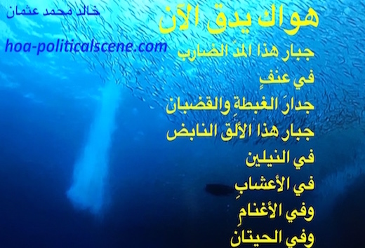 Your Love is Beating Now by poet & journalist Khalid Mohammed Osman on fish species and underwater world.