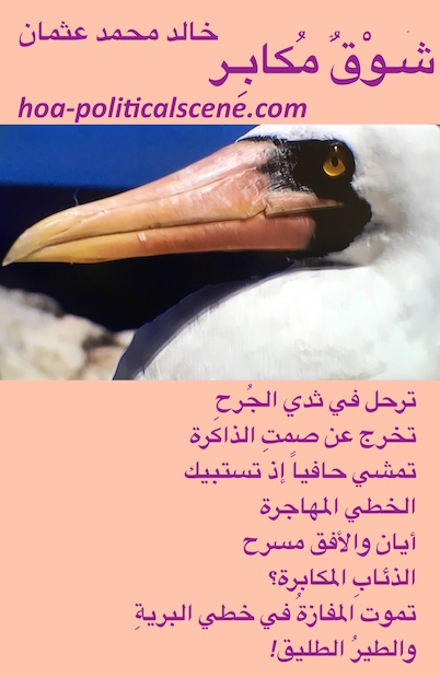 Arrogant Yearning by poet & journalist Khalid Mohammed Osman on beautiful bird.