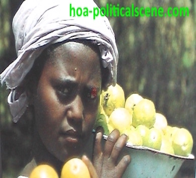 hoa-politicalscene.com/child-labor.html - Child Labor: A child girl selling fruits on Eritrean streets, pictured by a tourism bureau, to my surprise. It's posted also at Eritrean Political Scene.