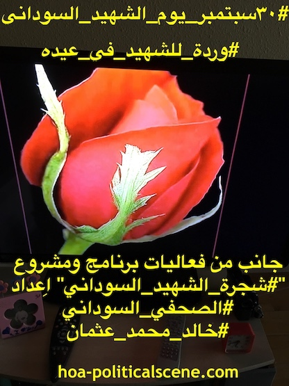 hoa-politicalscene.com/sudanese-martyrs-tree-posters.html - Sudanese Martyr's Tree Posters: A rose for the martyrs on his feast day, idea by Sudanese journalist Khalid Mohammed Osman.