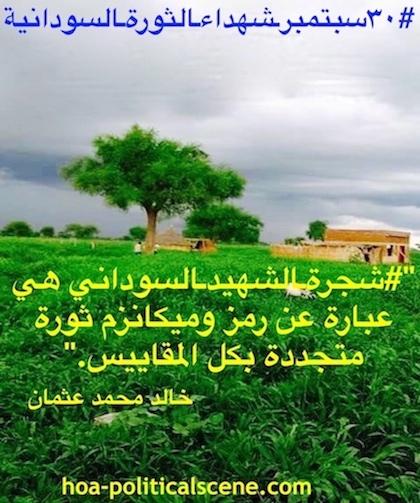 hoa-politicalscene.com/sudanese-martyrs-tree-posters.html - Sudanese Martyr's Tree Posters: The Martyr's Tree is a symbol and a revolutionary mechanism, idea by journalist Khalid Mohammed Osman.