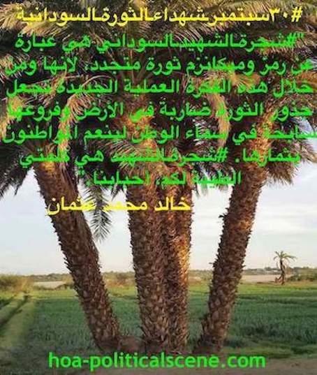 hoa-politicalscene.com/sudanese-martyrs-tree-posters.html - Sudanese Martyr's Tree Posters: Good words for the masses by Sudanese journalist Khalid Mohammed Osman.