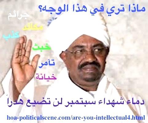 hoa-politicalscene.com/sudanese-political-scene.html - Sudanese campaigns to fight the captive of the international justice, Omar al Bashir of Sudan.