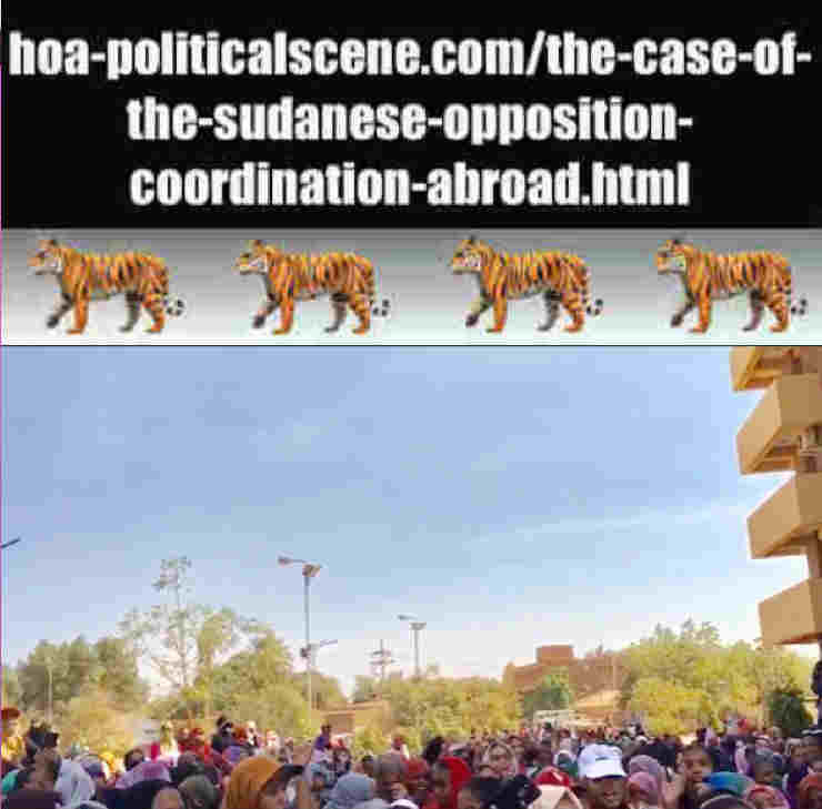 hoa-politicalscene.com/the-case-of-the-sudanese-opposition-coordination-abroad.html: The Case of the Sudanese Opposition Coordination Abroad: Sudanese protests in January 2019.
