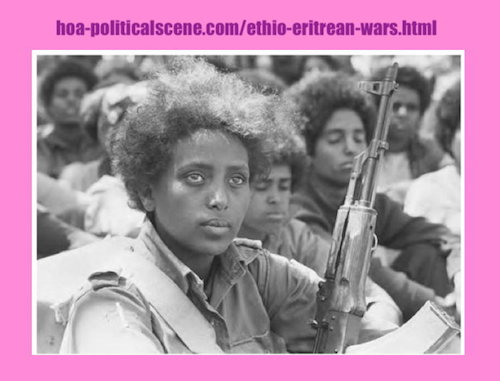 hoa-politicalscene.com/ethio-eritrean-wars.html - Ethio-Eritrean Wars: The Ethiopian -Eritrean Third War 1966 should come to an end, brothers and sisters. You are all blood relations.