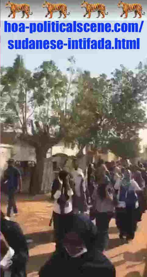 hoa-politicalscene.com/sudanese-intifada.html: Sudanese Intifada: يوميات الإحتجاجات السودانية في يناير 2019م. Diary of the Sudanese protests in January 2019.