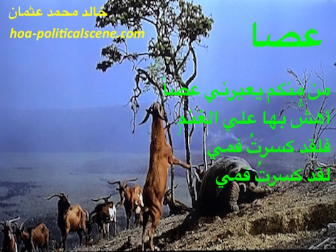 hoa-politicalscene.com/hoas-arabic-poetry.html - HOAs Arabic Poetry: Poems from