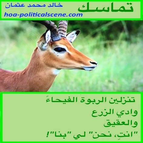 hoa-politicalscene.com/hoas-arabic-poetry.html - HOAs Arabic Poetry: Poetry scripture from