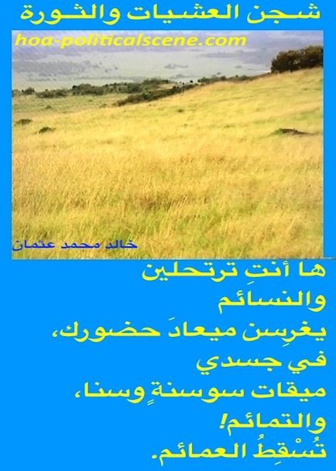 hoa-politicalscene.com/hoas-arabic-poetry.html - HOAs Arabic Poetry: Verse from