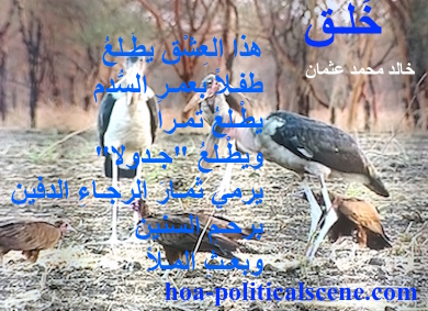 hoa-politicalscene.com - HOAs Design Gallery: Poetry from