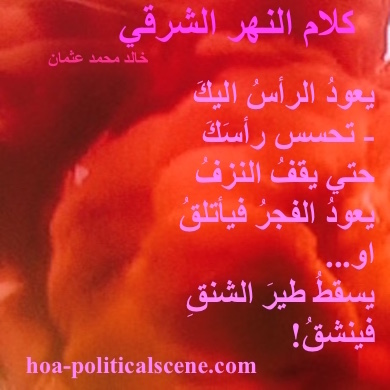 hoa-politicalscene.com - HOAs Design Gallery: Couplet of political poetry from