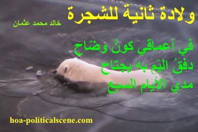 hoa-politicalscene.com - HOAs Design Gallery: Couplet of poetry from