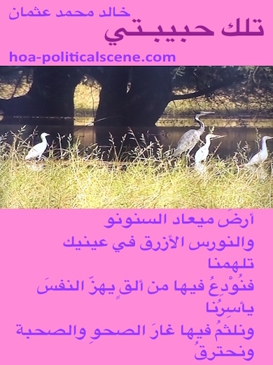 hoa-politicalscene.com - HOAs Love Poems: from