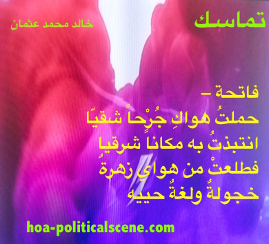 hoa-politicalscene.com - HOAs Photo Gallery: Couplet of political poetry from