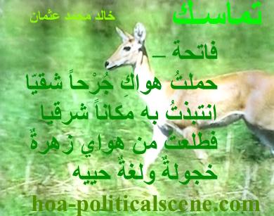 hoa-politicalscene.com - HOAs Political Poetry: from