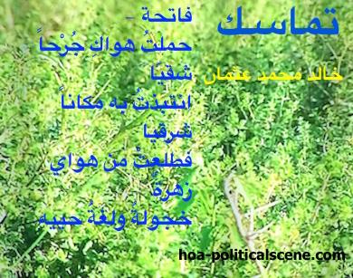 hoa-politicalscene.com - HOAs Political Poetry: rom