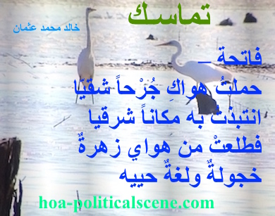 hoa-politicalscene.com - HOAs Political Poetry: from