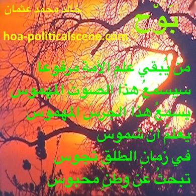 hoa-politicalscene.com - HOAs Scripturee: from