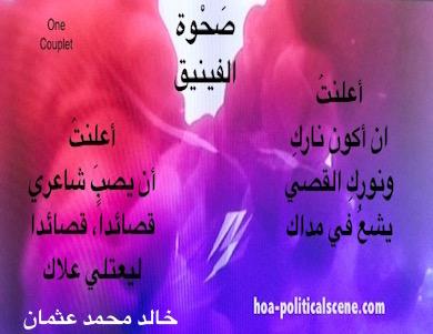 hoa-politicalscene.com - HOAs Verse:  A couplet from