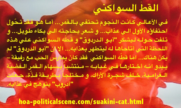 Suakini Cat: Picturing Short Stories by Khalid Mohammed Osman.
