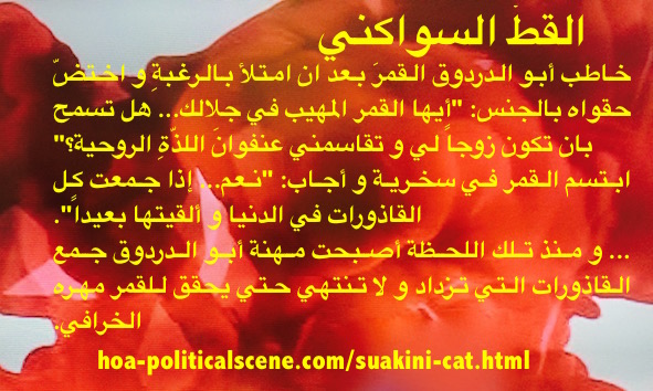 Suakini Cat: The First Paragraph From the Short Story Written by Khalid Mohammed Osman.