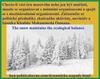 hoa-politicalscene.com/dynamicke-napady.html - Dynamické nápady: Chcete-li vést masovou éru nebo se k ní připojit, musíte se organizovat s místními organizacemi a spojit se s mezinárodními organizacemi.