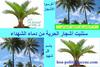hoa-politicalscene.com/sudanese-martyrs-day-comments.html - to plant the #Sudanese_Martyrs_Tree, the #dynamic_idea of the #Sudanese_journalist #Khalid_Mohammed_Osman.