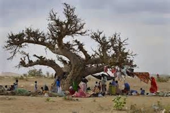 Under the Baobab Tank of Water in Darfur, Sudan.