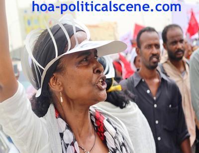 Invitation to Comment 35: Sudanese Bidding Fatima Ahmed Ibrahim Farewell 2.