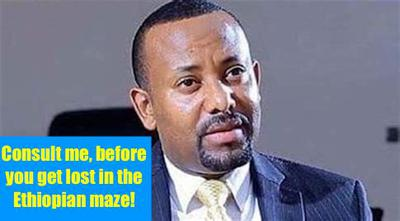 hoa-politicalscene.com/invitation-1-hoas-friends143.html: What did Ethiopian Prime Minister Abiy Ahmed Ali said to sheikh UAE Mohammed bin Zayed al Nahyan?