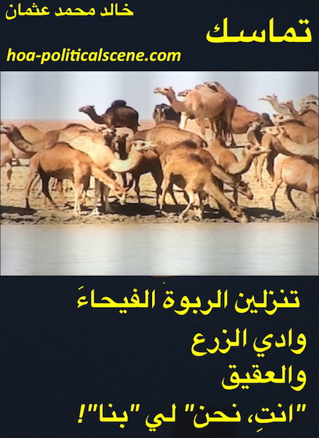 hoa-politicalscene.com/arabic-hoa.html - Arabic HOA: Couplet of poetry from Consistency by poet and journalist Khalid Mohammed Osman on Beja of Sudan's livestocks / camels breeding.