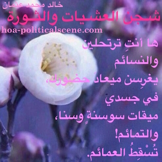 hoa-politicalscene.com/arabic-poetry-posters.html - Arabic Poetry Posters: Snippet of poetry from
