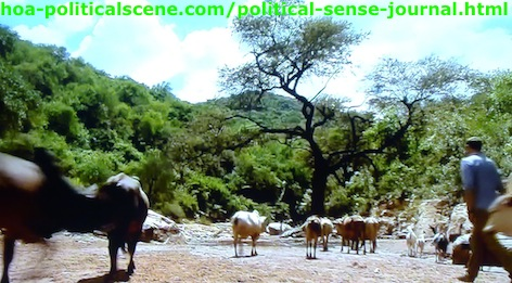 Political Sense Journal: East Africans Dig for Water, When the Rivers Dried