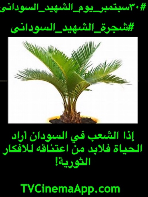 hoa-politicalscene.com/sudanese-martyrs-tree-comments.html - Sudanese Martyr's Tree Comments: The idea of the Sudanese Martyr's Tree is by KHALID MOHAMMED OSMAN. ميكانزم_ثورة وواحدة من استراتيجيات في اطار فعاليات سبتمبر للقضاء علي الارهابيين في النظام السوداني#