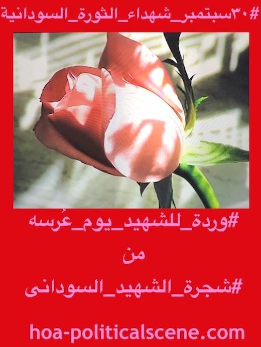 hoa-politicalscene.com/sudanese-martyrs-tree-comments.html - Sudanese Martyr's Tree Comments: The idea of the Sudanese Martyr's Tree is by KHALID MOHAMMED OSMAN. #شجرة_الشهيد_السوداني حلقة من استراتيجيات في اطار فعاليات سبتمبر للقضاء علي الارهابيين في النظام السوداني