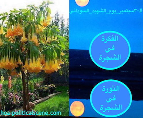hoa-politicalscene.com/sudanese-martyrs-tree.html - Sudanese Martyr's Tree: The Idea is on the Tree, The Revolution is on the Tree. Ideas made by Sudanese journalist Khalid Mohammed Osman.