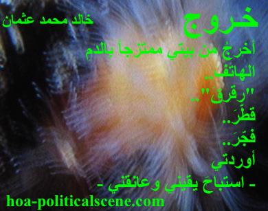 hoa-politicalscene.com - HOAs Photo Gallery: Couplet of political poetry from