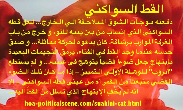 Suakini Cat: A Paragraph From the Short Story Written by Khalid Mohammed Osman.
